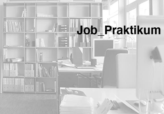 _Stellengesuch_Job_Praktikum_s
